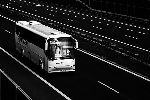 transport par bus